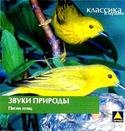 голоса птиц россии слушать