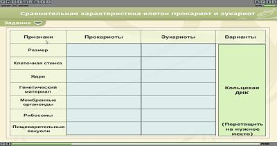 таблица по анимации