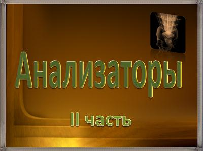 Автор гурбанова наталья дмитриевна