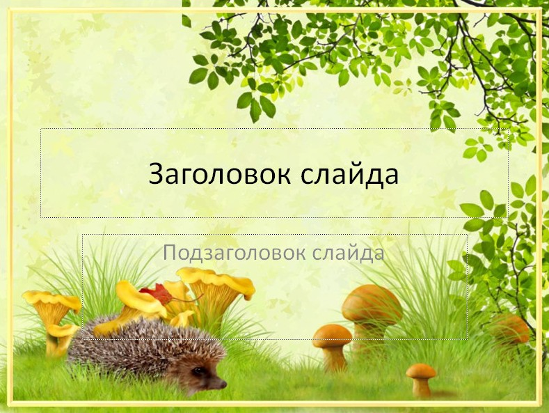 Шаблоны для презентации грибы скачать бесплатно