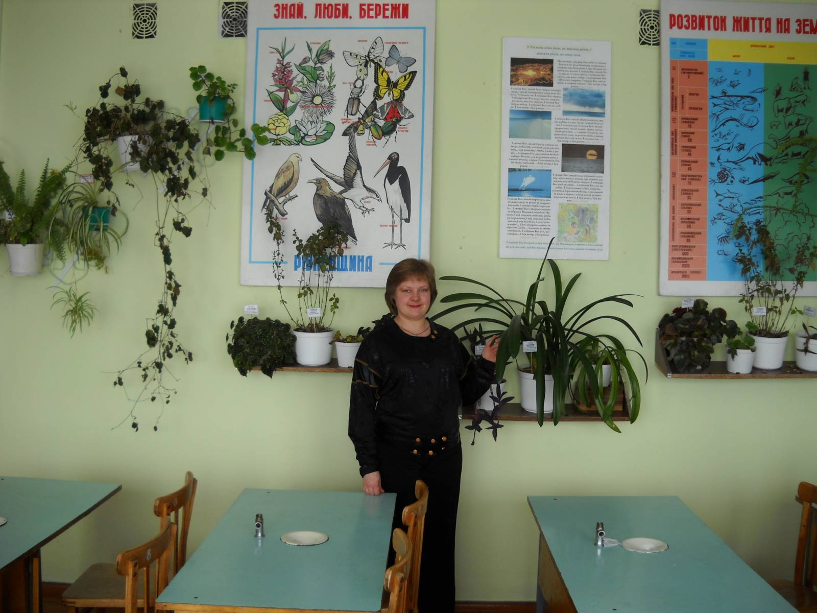 Учительница википедияом в кабинете фото 13 фотография